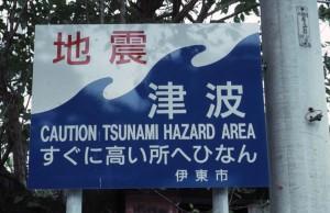 Bardintzeff.J 5.10 tsunami