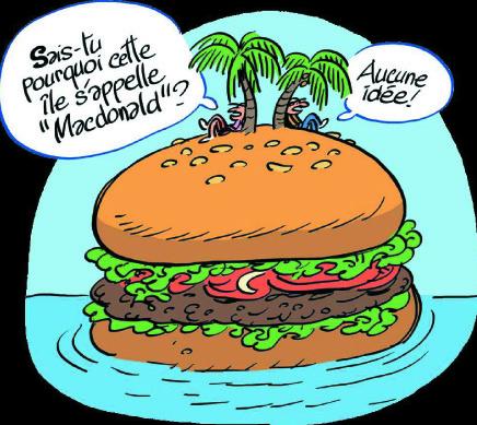 Macdonald par jacques marie bardintzeff - Le rangement pour les nuls ...
