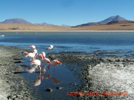 Bardintzeff.Bolivie.SAM_7581.laguna_Canapa.s