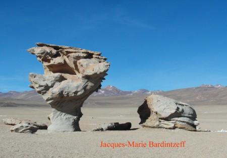Bardintzeff.Bolivie.SAM_7652.arbre_de_pierre.s