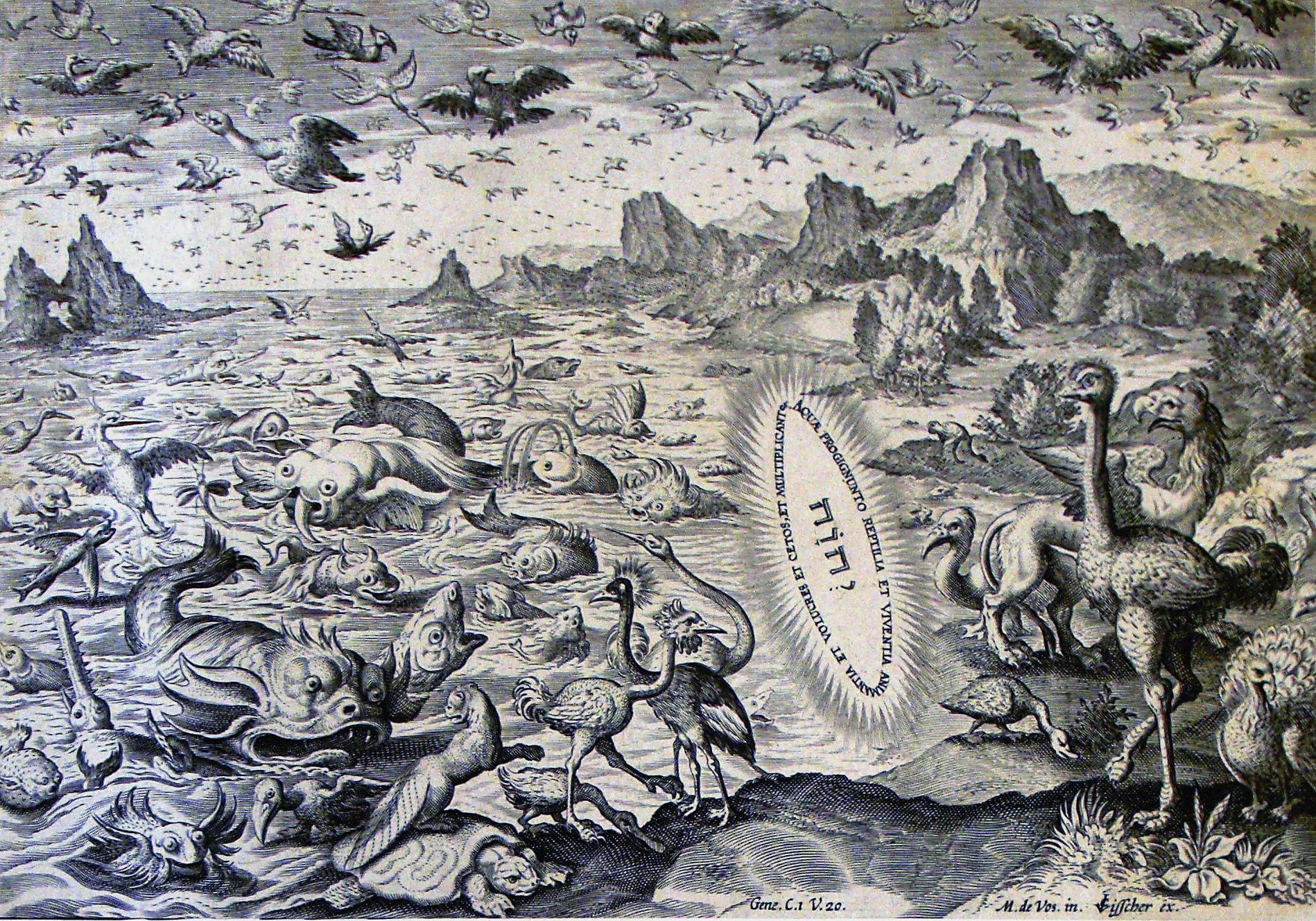 The Creation of the Animals According to the Bible. This engraving by M. De Vos illustrates verse 20 of the first chapter of Genesis, according to which the creatures of the sea and air were created simultaneously. The artist has drawn mostly imaginary creatures which might once have existed !