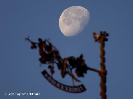 lune22