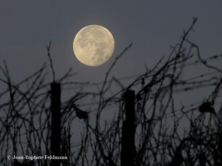 lune35
