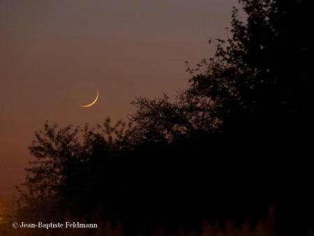 croissant_lune (4)