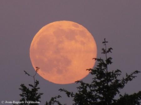 pleine_lune11