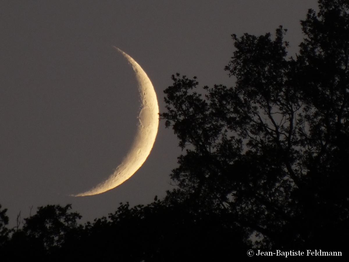 Le croissant de lune du 19 juillet pos sur l 39 horizon for Jardin lune juillet 2015