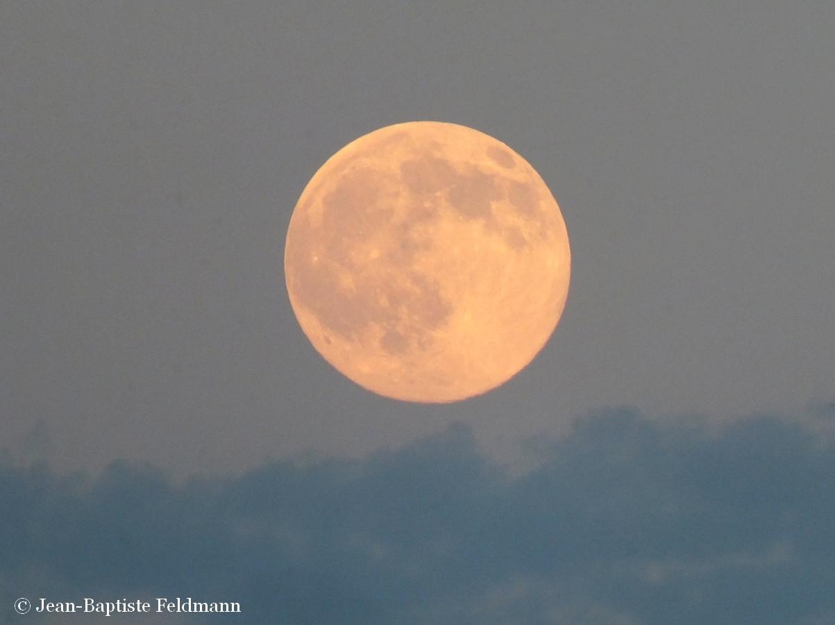 Admirez la premi re super lune de l 39 ann e le 29 ao t for Jardin lune octobre 2015