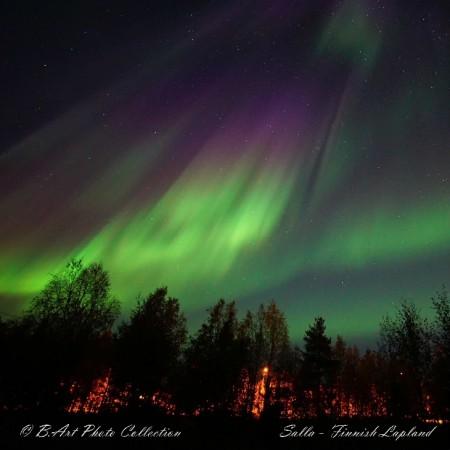 aurore4