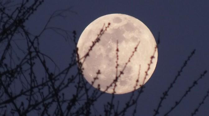 Pleine Lune des fraises pour un solstice d'été
