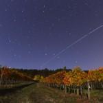 Des vignes aux couleurs de l'automne sous l'ISS
