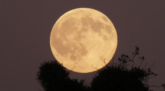 Le 16 octobre c'est la Pleine Lune des chasseurs