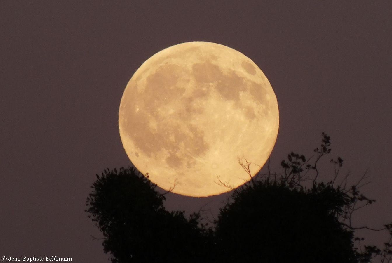 Le 16 octobre c 39 est la pleine lune des chasseurs - Lune descendante octobre 2017 ...