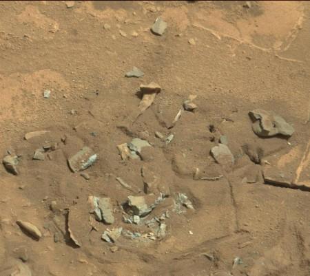 Trouver l'os de dinosaure !