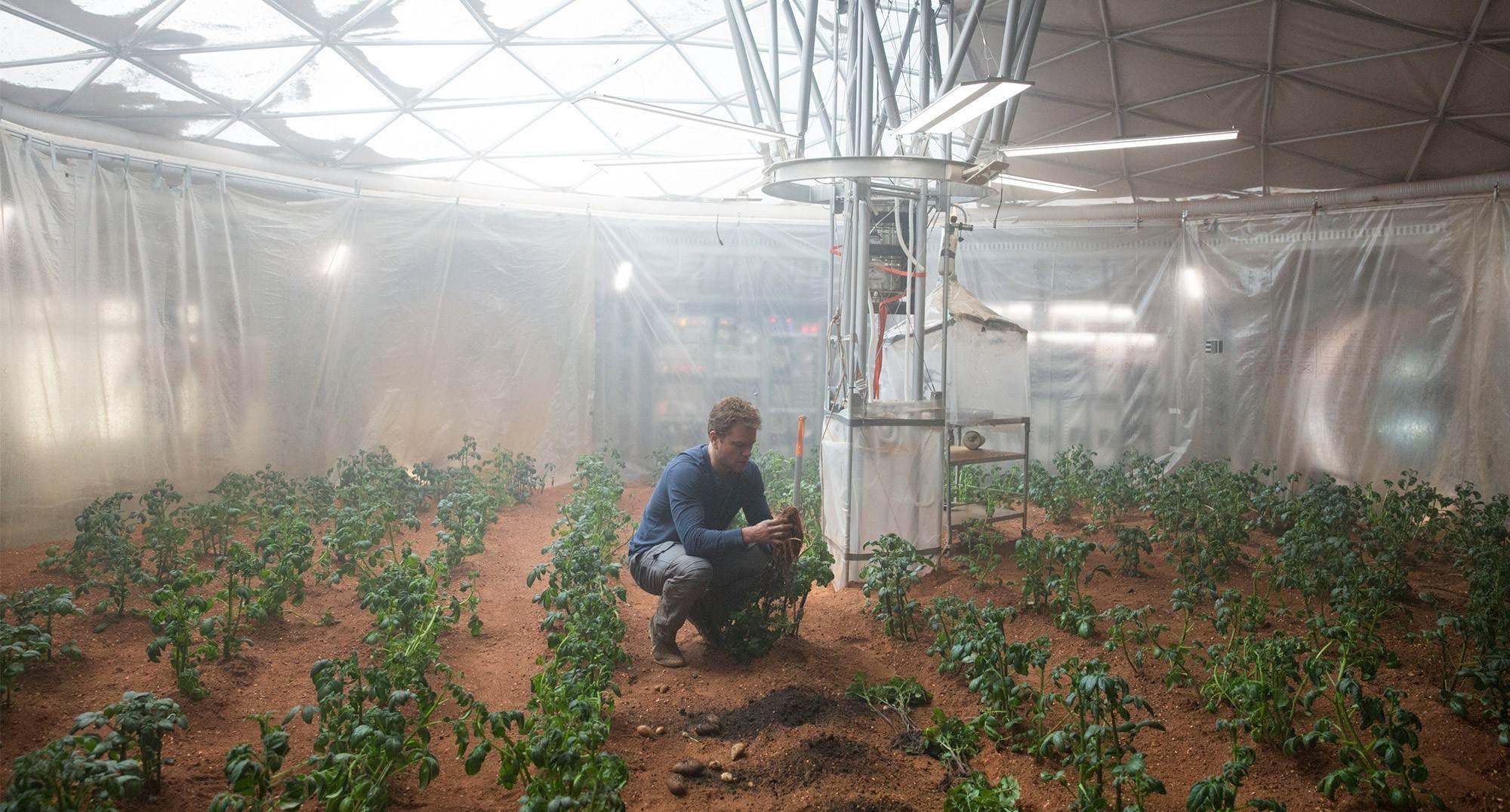 Le sol martien est chimiquement agressif et impropre à l'agriculture en l'état