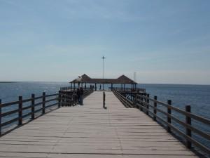 Puerto Suarez, Bolivie, face à Corumba au Brésil. Jetée vers les eaux libres permettant de rejoindre le Parana et au-delà l'Atlantique. A. Gioda, IRD.