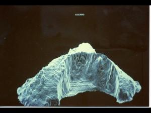 El Hierro. Modèle numérique de terrain (MNT) par Christian Deprateare. Cliché : A. Rival, IRD-Cirad.