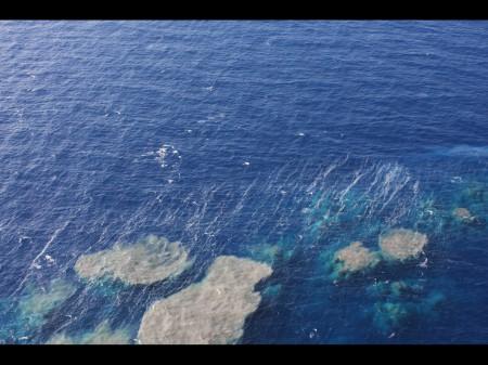 Diaporama du volcan sous-marin d'El Hierro fin 2011. © E. Villalba Moreno.