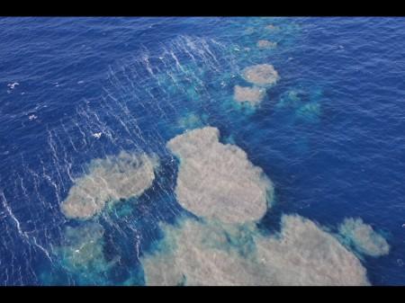 Traces du volcanisme sous-marin d'El Hierro de fin 2011. © E. Villalba Moreno.