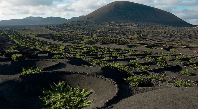 Lanzarote le volcan le d sert et ses vignobles selon luis santana par alain gioda - Office tourisme lanzarote ...
