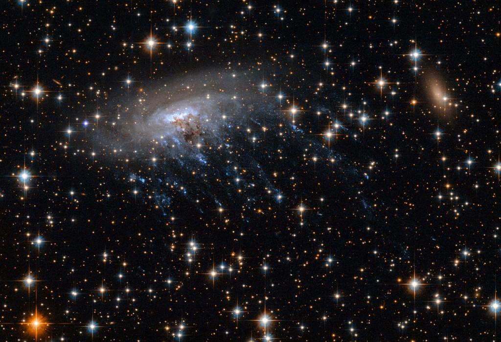 """La galaxie spiral ESO 137-001 """"éventrée"""" lors de son passage à travers le cœur de l'amas Abell 3627."""