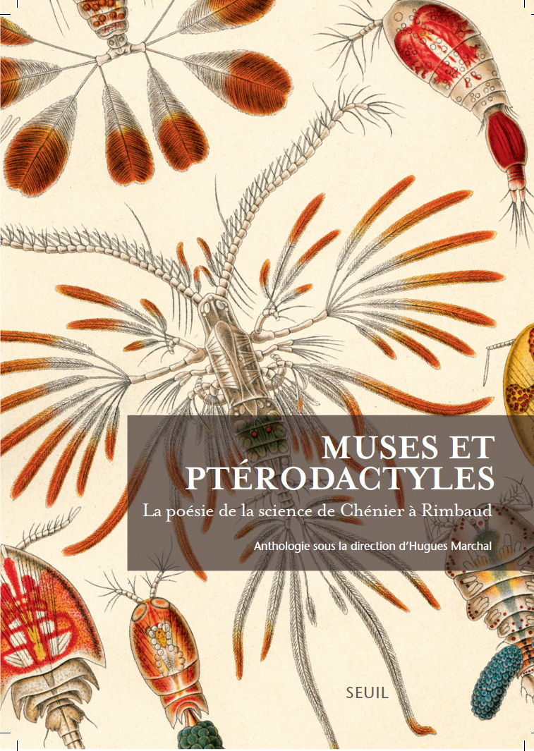 Muses-Pterodactyles