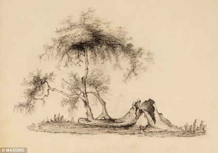 Le pommier de Newton abattu après la tempête de 1815, avant la repousse