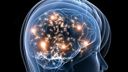 cerveau-activite-sn635