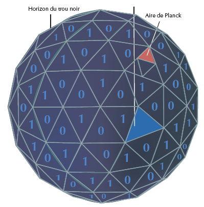 L'entropie d'un trou noir est proportionnelle à la surface de son horizon. Un trou noir dont l'horizon est constitué de A aires de Planck a une entropie de A/4 unités. Une aire de Planck (10–66 cm2) est l'unité quantique fondamentale de surface. Du point de vue de l'information, tout se passe comme si l'entropie était inscrite sur l'horizon du trou noir et que chaque bit d'information, sous forme de 0 ou de 1, correspondait à quatre aires de Planck.